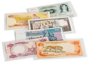 Currency Holder Large - Box of 100