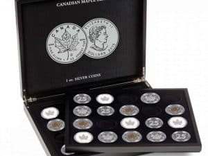 Presentation Case - Holds 20 Canadian Maple Leafs