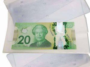 Paper Money Album Extra Pages Pk.10